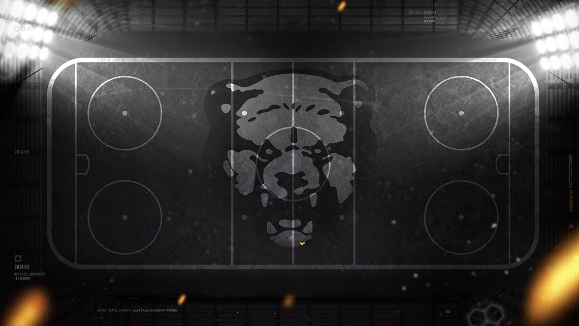 design khl medvescak hockey field
